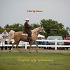 Order # DS7I2191___Giated horse show 2016__© Porch Pig Productions