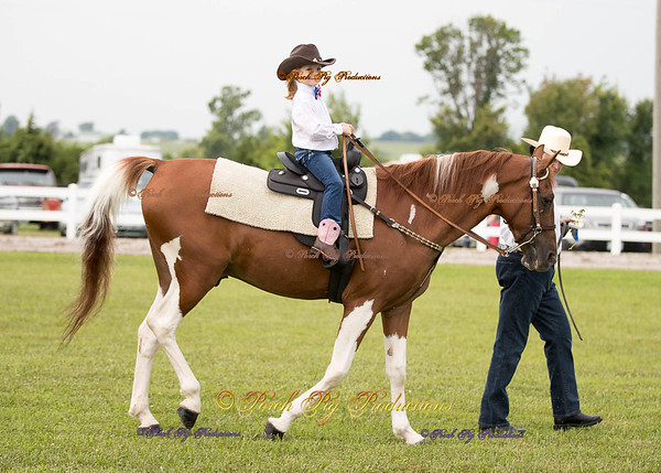 Order # DS7I2049___Giated horse show 2016__© Porch Pig Productions