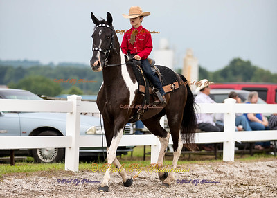 Order # DS7I2079___Giated horse show 2016__© Porch Pig Productions