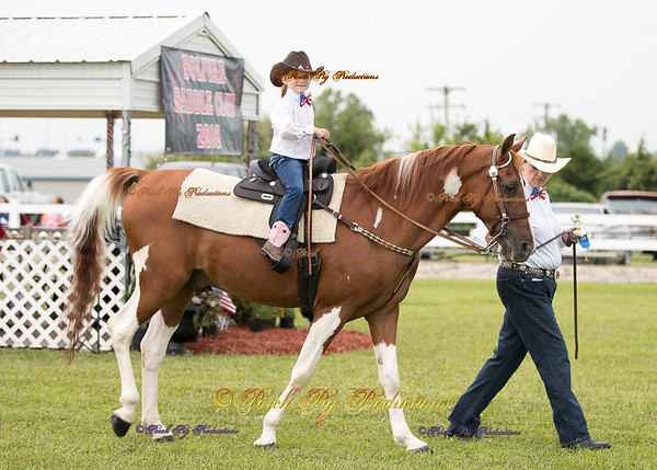 Order # DS7I2048___Giated horse show 2016__© Porch Pig Productions