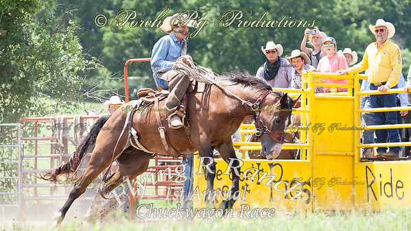 Order # IMG_6501___Bronc Fanning__© Porch Pig Productions