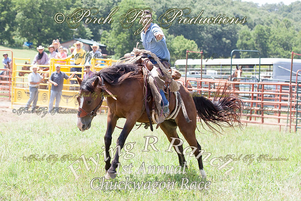 Order # IMG_6511___Bronc Fanning__© Porch Pig Productions