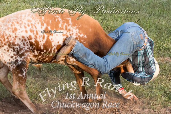 Order # PPP_7117___Ranch Rodeo__© Porch Pig Productions