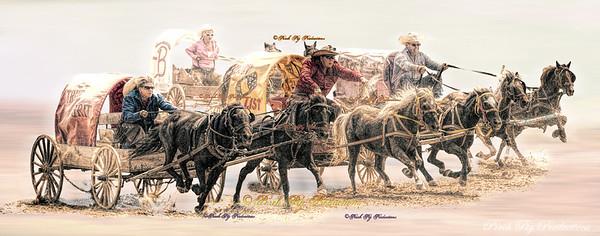 IMG_0588 Ponies racing