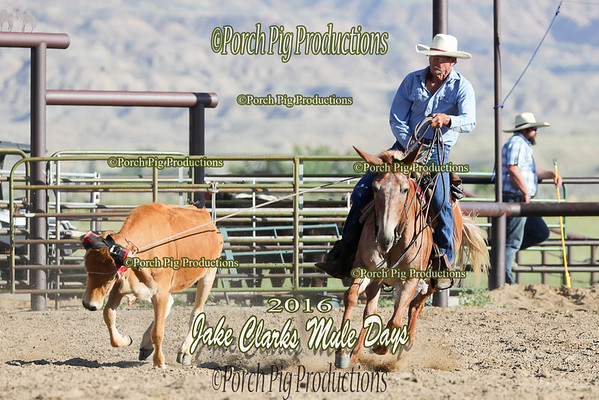 Order # DS7I1462___Jake Clark Roping__©porch Pig Productions LLC