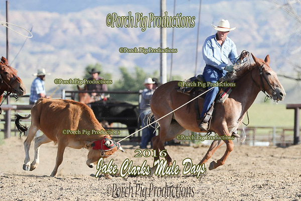 Order # DS7I1463___Jake Clark Roping__©porch Pig Productions LLC