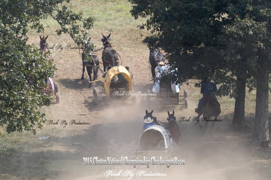 Big Mules Order#_528A4466