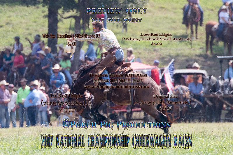 2017 National Championship Chuckwagon Races