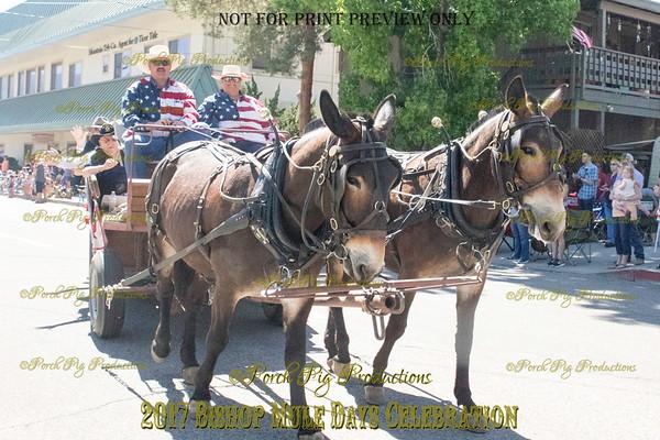 528A2968_Bishop 2017 Parade