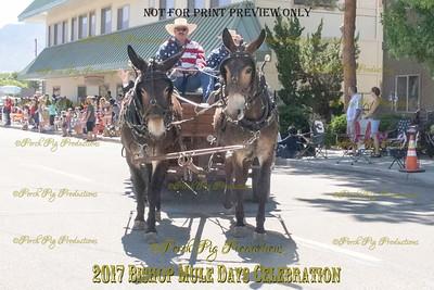 528A2966_Bishop 2017 Parade