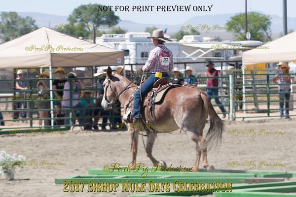 PPP_6616257 Carly Sue