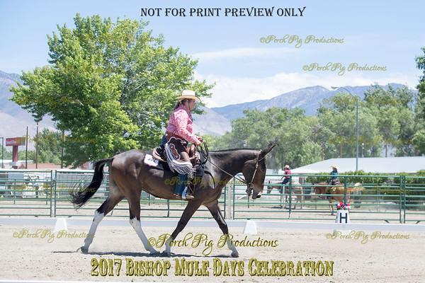 PPP_9319 (1)302 Diamond Creek Legend