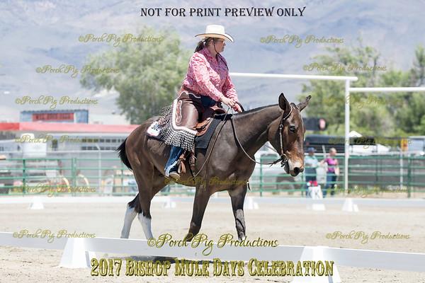 PPP_9323 (1)302 Diamond Creek Legend
