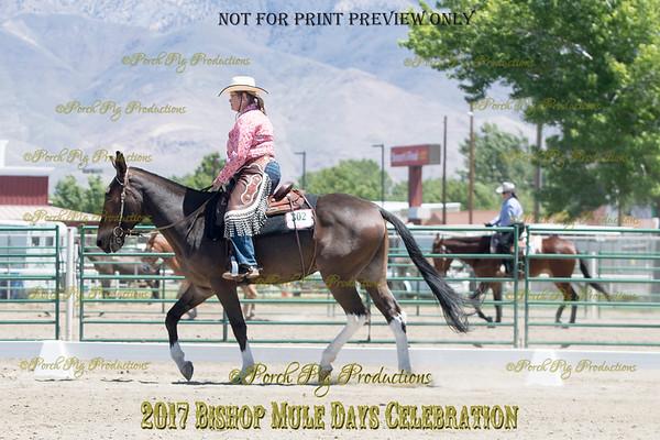 PPP_9322 (1)302 Diamond Creek Legend