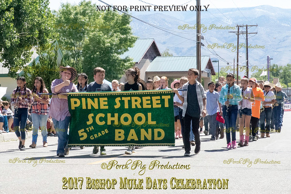 528A3085_Bishop 2017 Parade