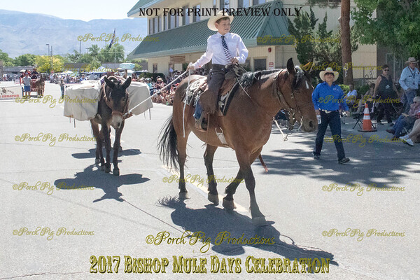 528A2994_Bishop 2017 Parade