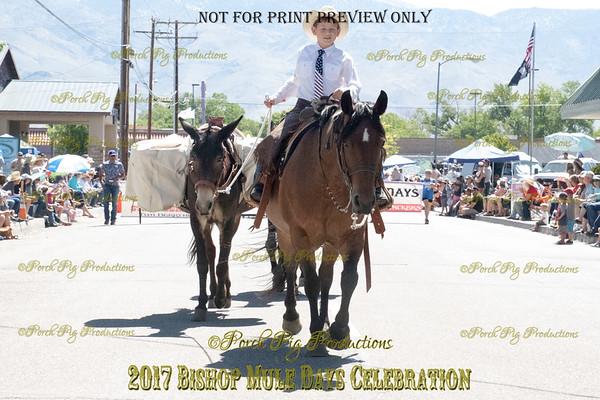528A2993_Bishop 2017 Parade