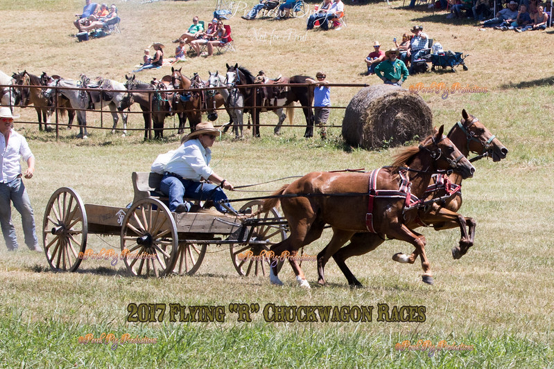 Flying R Ranch Chuckwagon Races