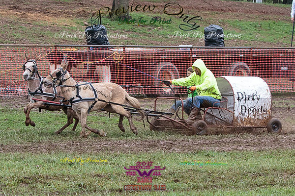 Order # 528A9038___Saturday races__©Porch Pig Productions