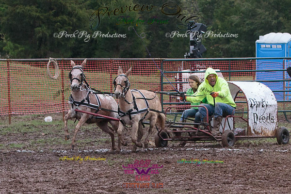 Order # 528A9034___Saturday races__©Porch Pig Productions