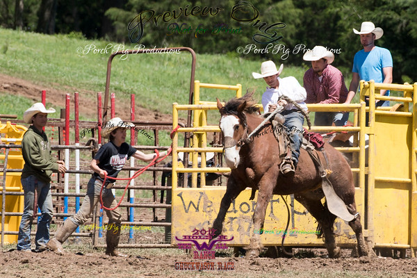 TO PURCHASE IMAGES http://www.porchpigproductions.org/PPSales-Galleries/2017-Sales-Galleries/Hole-In-The-Ranch-1st-annual-Chuckwagon-Race/Sunday-Bronc-Fanning?mobile=true