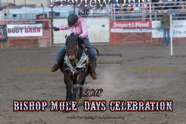 Bishop Mule Days 2018