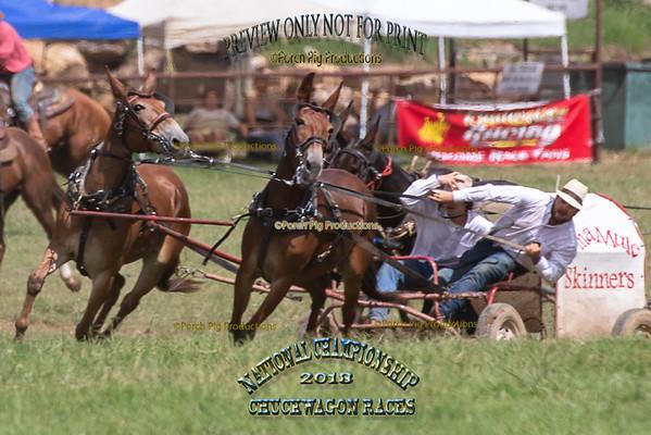 2018 National Championship Chuckwagon Races