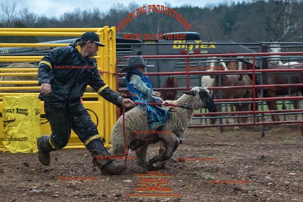 JAMES: Busten ass ranch mule auction