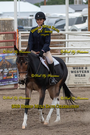 PPP_9918 May 22, 2019 ©Porch Pig Productions