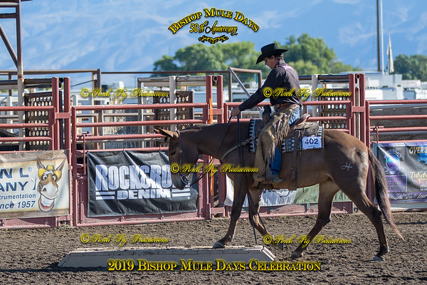 528A3091 May 24, 2019 @Porch Pig Productions