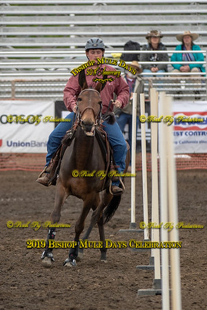 PPP_1722 May 23, 2019 ©Porch Pig Productions