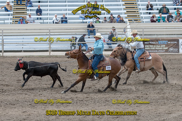 PPP_4382 May 23, 2019 ©Porch Pig Productions