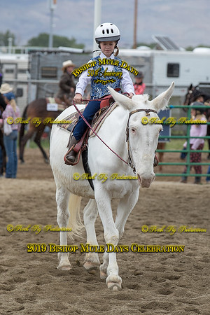 PPP_4564 May 23, 2019 © Porch Pig Productions