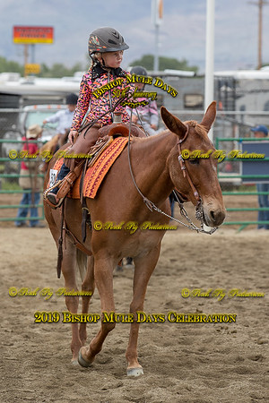 PPP_4572 May 23, 2019 © Porch Pig Productions