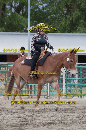 PPP_4796 May 23, 2019 © Porch Pig Productions