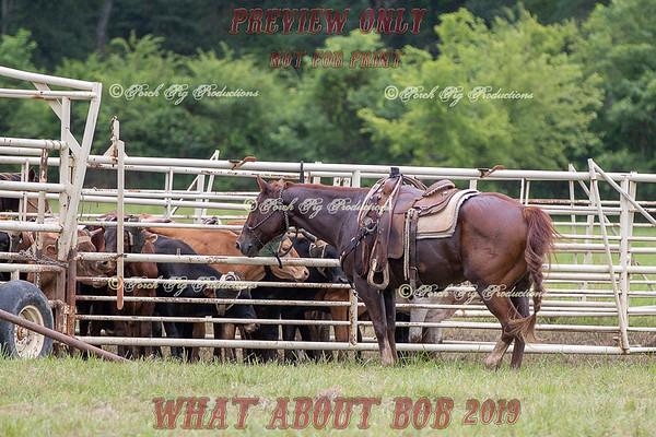 Pasture Roping Jpeg