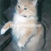 Dusty<br /> <br /> Owner: Beverly Rivers, Morrisonville, NY.