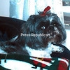Sophie<br /> <br /> Owners: Susan and Bob LaFountain, Keeseville, NY