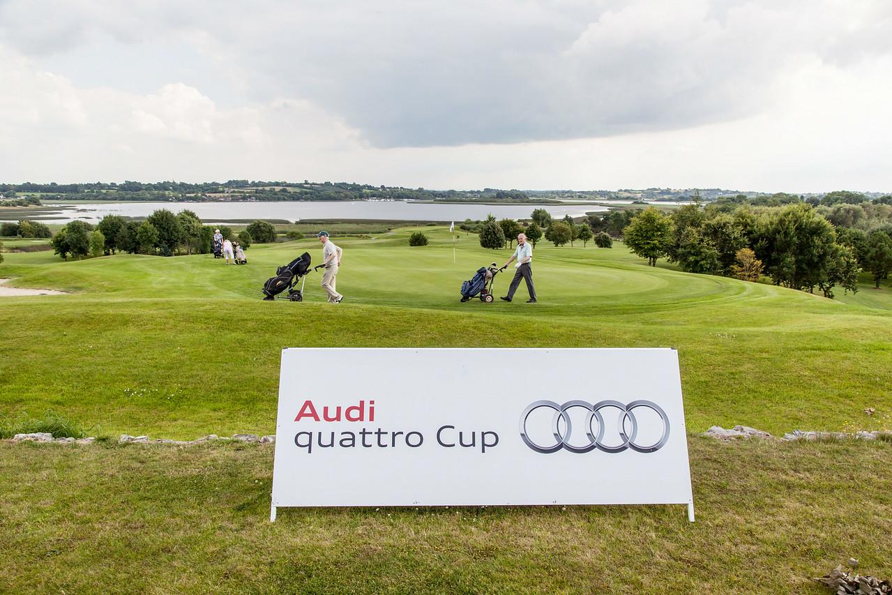 Audi-Golf-2014-010