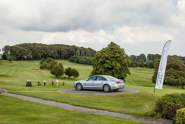 Audi-Golf-2014-011