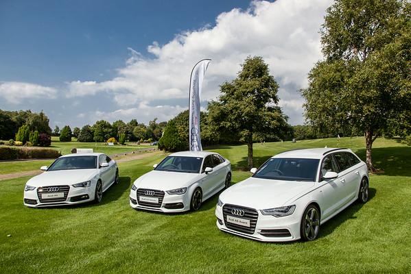 Audi-Golf-2014-008