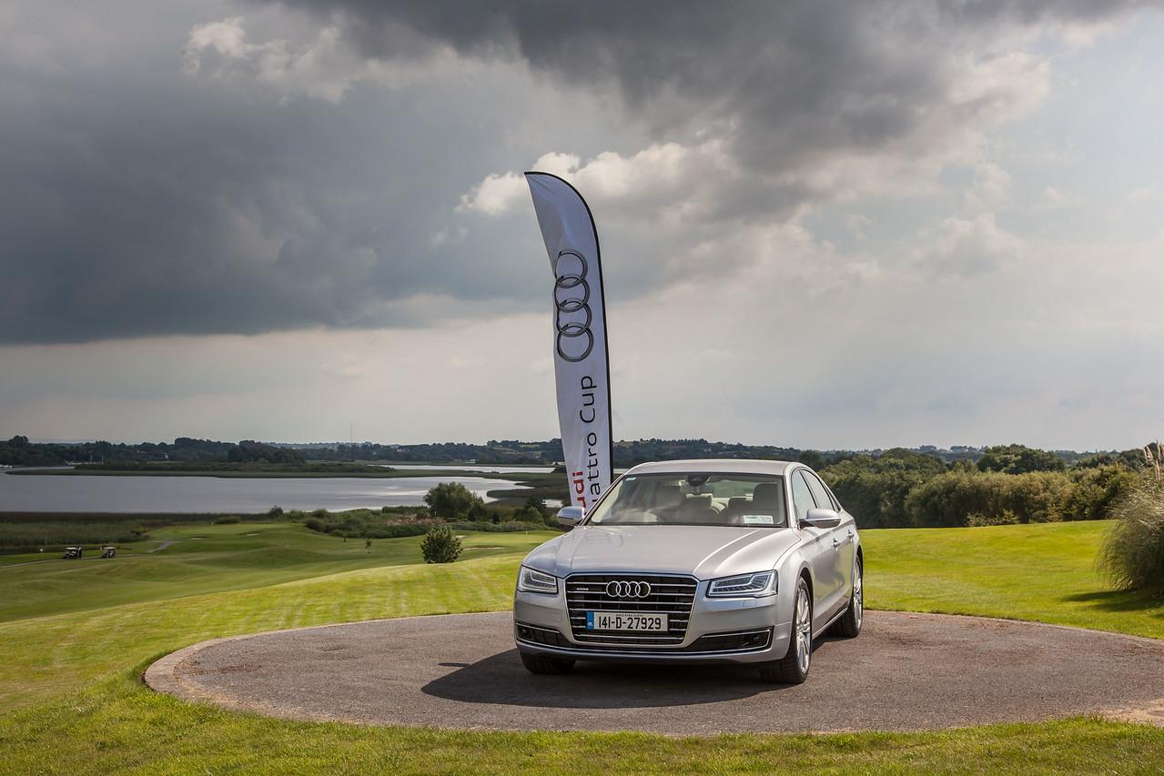 Audi-Golf-2014-009