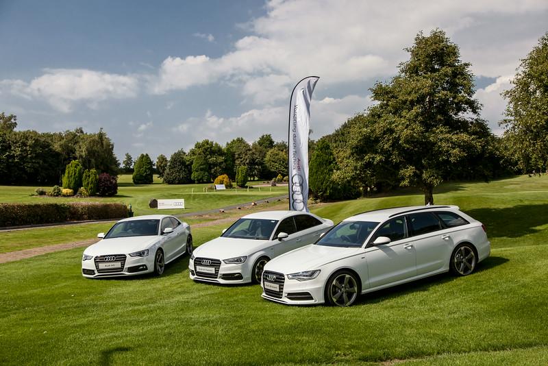 Audi-Golf-2014-006