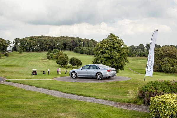 Audi-Golf-2014-012