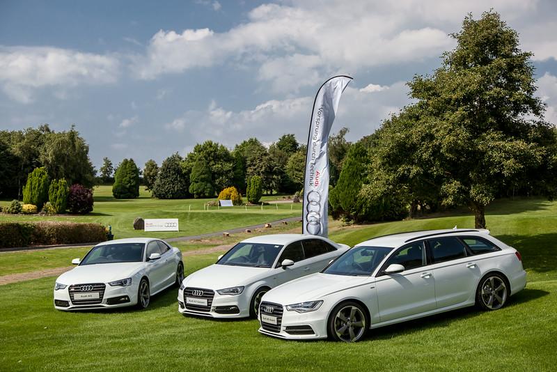 Audi-Golf-2014-007