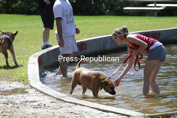 Sunday, August 29, 2010. Second-annual Doggie Paddle Day sponsored by the Town of Plattsburgh. There were also contests for obedience, best tail-wagger and look-alike. For a small donation, owners could also get their pet's nails clipped, with proceeds benefiting the Humane Society. The event takes place after the pool closes for the season because of the risk of elevated bacteria levels due to the dogs. <br><br>(P-R Photo/Gabe Dickens)