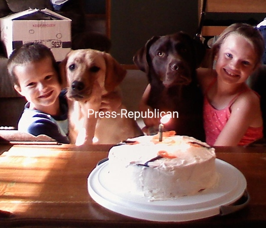 You mean we have to share our first birthday cake?!<br /> <br /> Photographer's Name: Jill Tarabula<br /> Photographer's City and State: Peru, NY