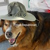 Our fishing buddy, Zeus<br /> <br /> Photographer's Name: Ruthann Lee<br /> Photographer's City and State: Willsboro, NY