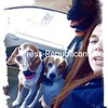 My Girls and Mr. Man!<br /> <br /> Photographer's Name: Amber Galarneau<br /> Photographer's City and State: Plattsburgh, NY