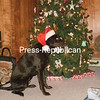 waiting for santa<br /> <br /> Photographer's Name: Allen Parent<br /> Photographer's City and State: Chazy, NY